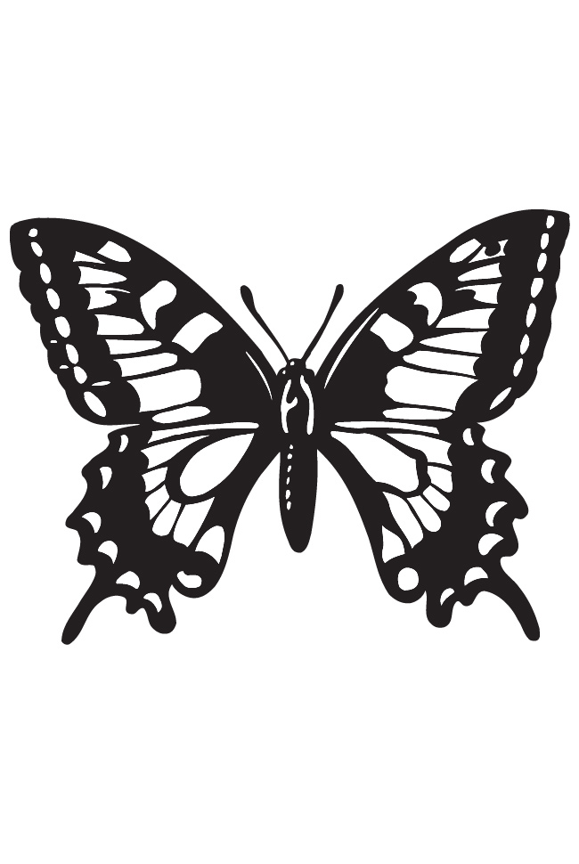 Free Outlines Of Butterflies, Download Free Clip Art, Free