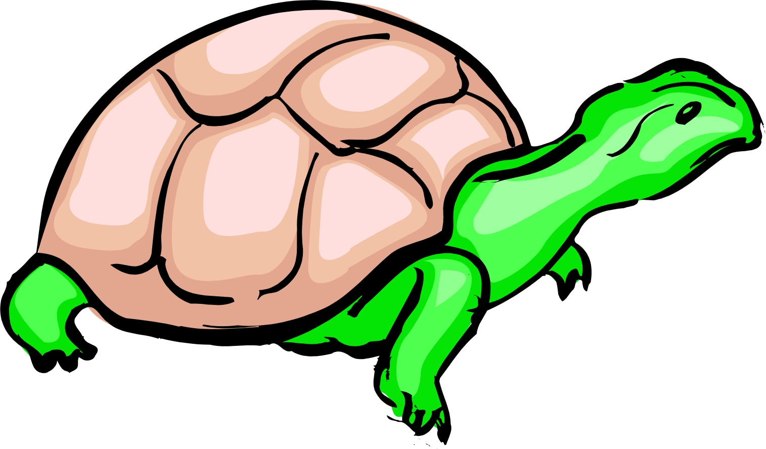 hight resolution of cartoon turtle clipart library clipart library