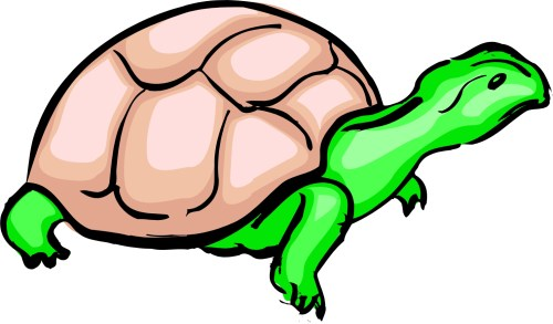 small resolution of cartoon turtle clipart library clipart library