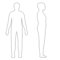 outline human drawing person body line silhouette clipart clip transparent background side blank template cliparts coloring figure map torso empty