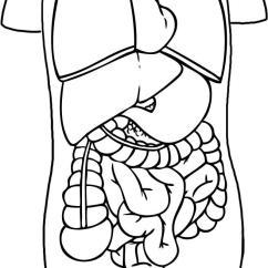 Sketch Diagram Online Stewart Warner Water Temp Gauge Wiring How To Draw Anatomy Step By People Free Human Heart 2367869 License Personal Use