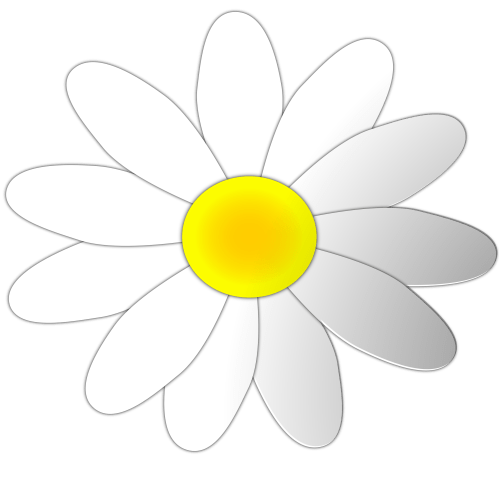 small resolution of daisy flowers clip art clipart library