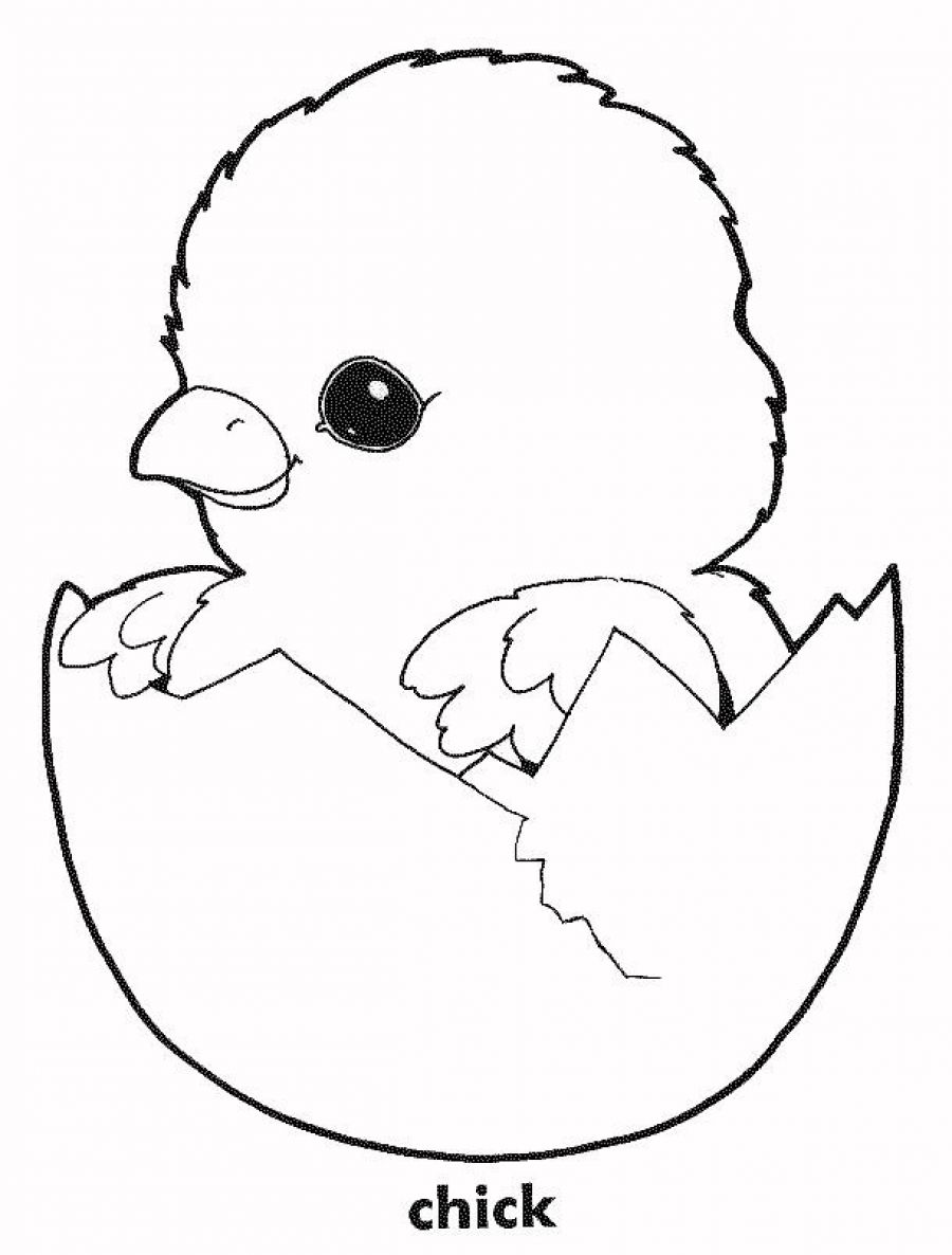 Free Coloring Pages For Chickens, Download Free Clip Art