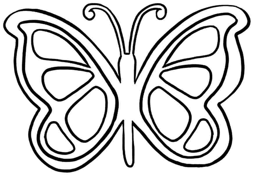 Animal Butterfly Coloring Sheets Free Printable For