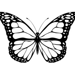 black and white coloring page of monarch butterfly yooall [ 1024 x 1024 Pixel ]