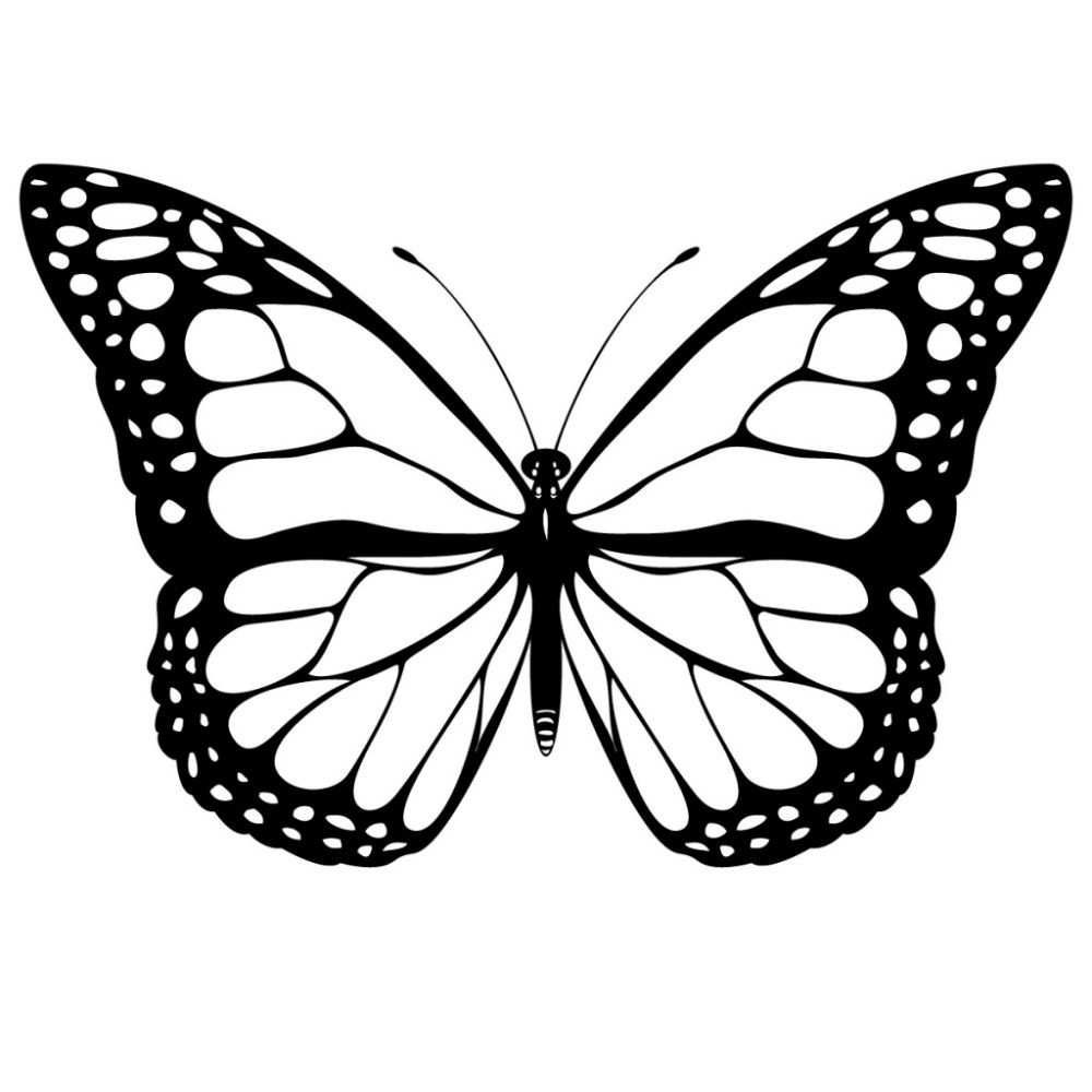 medium resolution of black and white coloring page of monarch butterfly yooall
