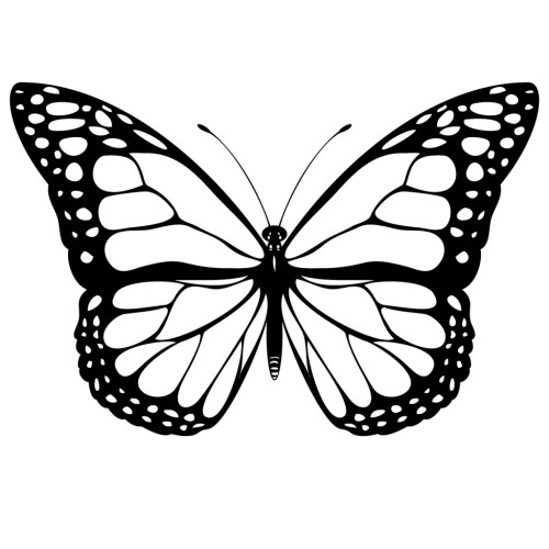 small resolution of black and white coloring page of monarch butterfly yooall