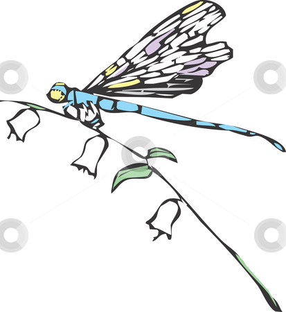 free dragonfly vector
