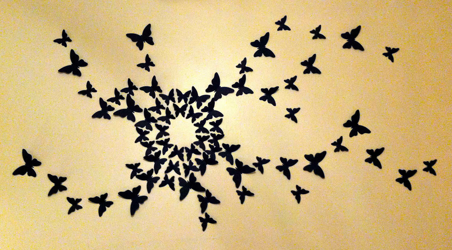 Free Butterfly Art Download Free Clip Art Free Clip Art On Clipart Library