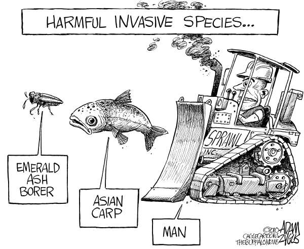 Free Invasive Species Cartoon, Download Free Clip Art