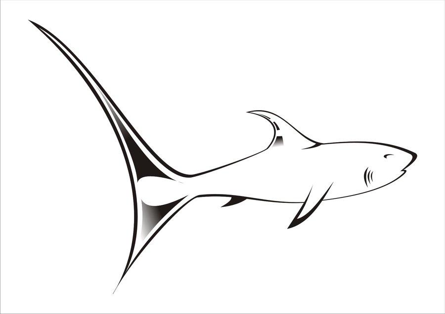 Free Shark Graphics, Download Free Clip Art, Free Clip Art