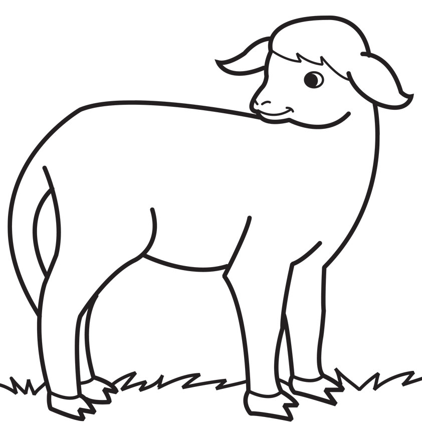 Free Sheep Drawings For Kids, Download Free Clip Art, Free