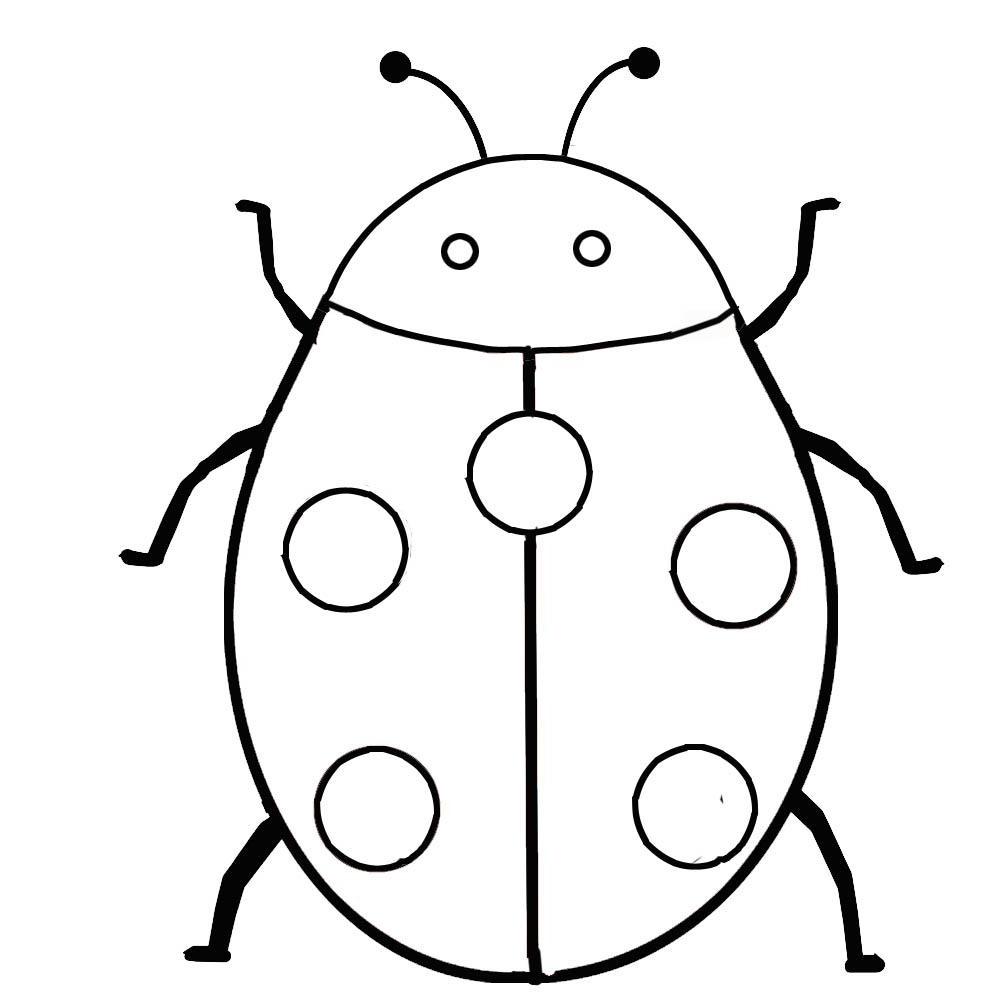 Free Printable Pictures Of Insects, Download Free Clip Art