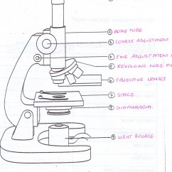Microscope Diagram Enchanted Learning 2008 Ford Focus Wiring Free Drawing Download Clip Art On All Saints Online For Labelling