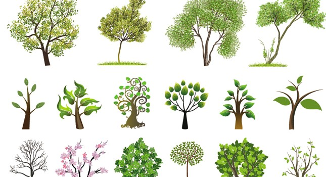free trees vector download