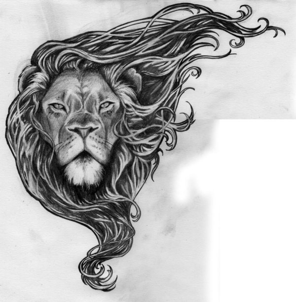 free lion head drawing