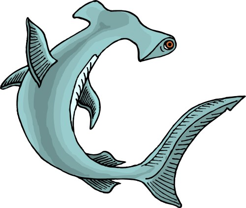 small resolution of hammerhead shark clip art clipart library free clipart images