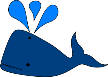 whale clipart library cartoon clip beluga pink