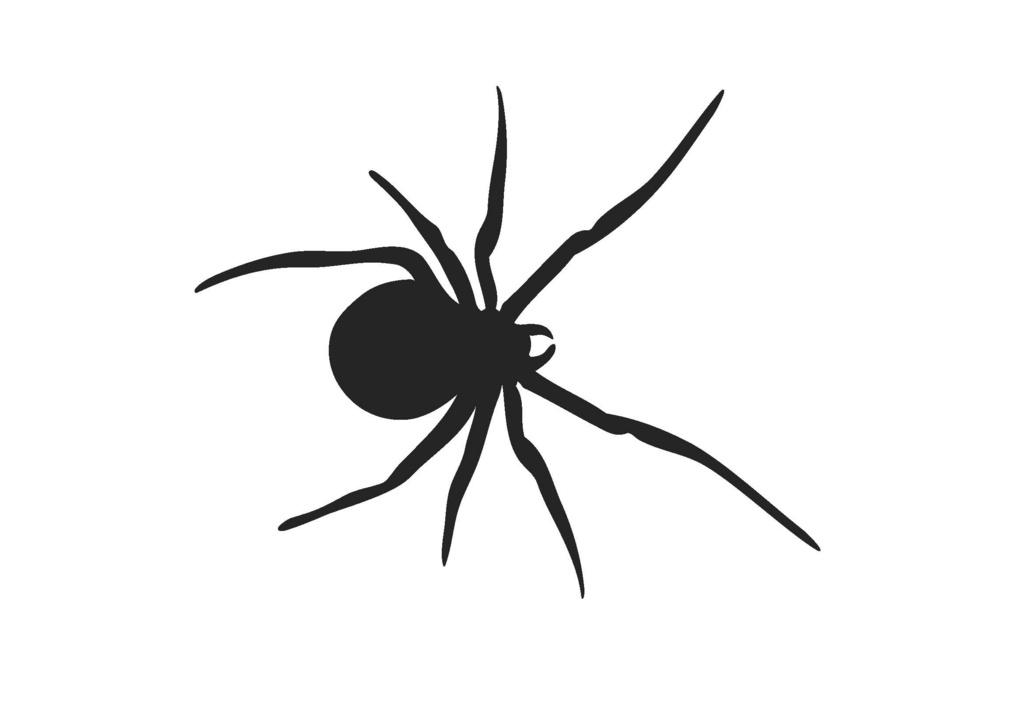 Black Widow Drawings