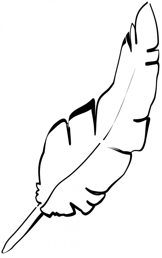 Free Chicken Outline, Download Free Clip Art, Free Clip