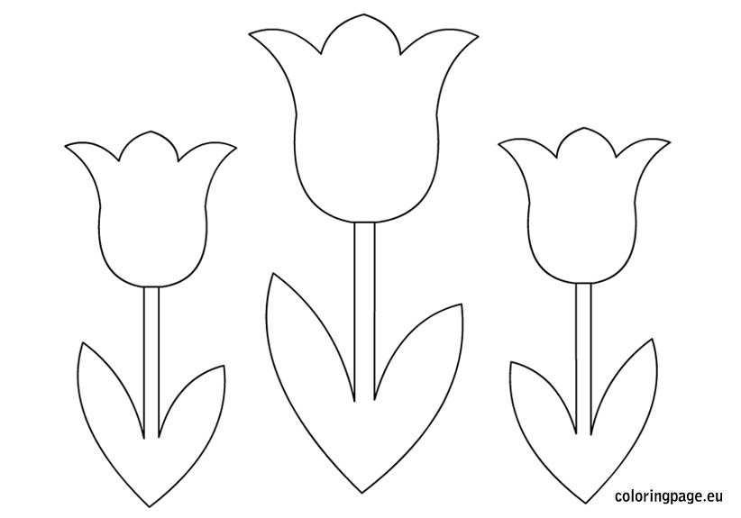 Free Flower Template To Colour, Download Free Clip Art