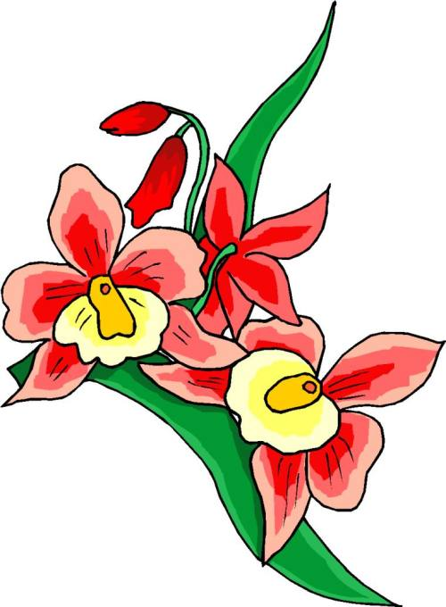 small resolution of clip art flower school clipart