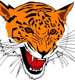 cartoon tiger clipart library [ 1284 x 1034 Pixel ]