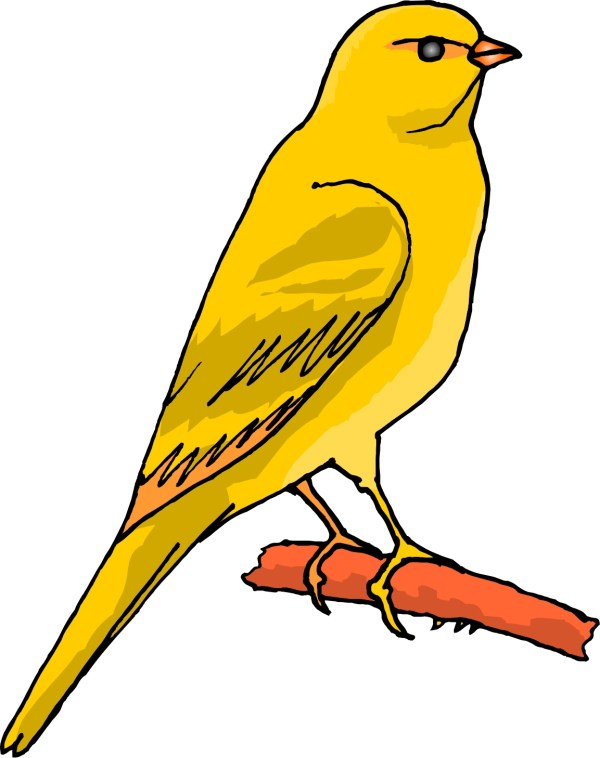 Free Cartoon Bird Clipart Clip Art