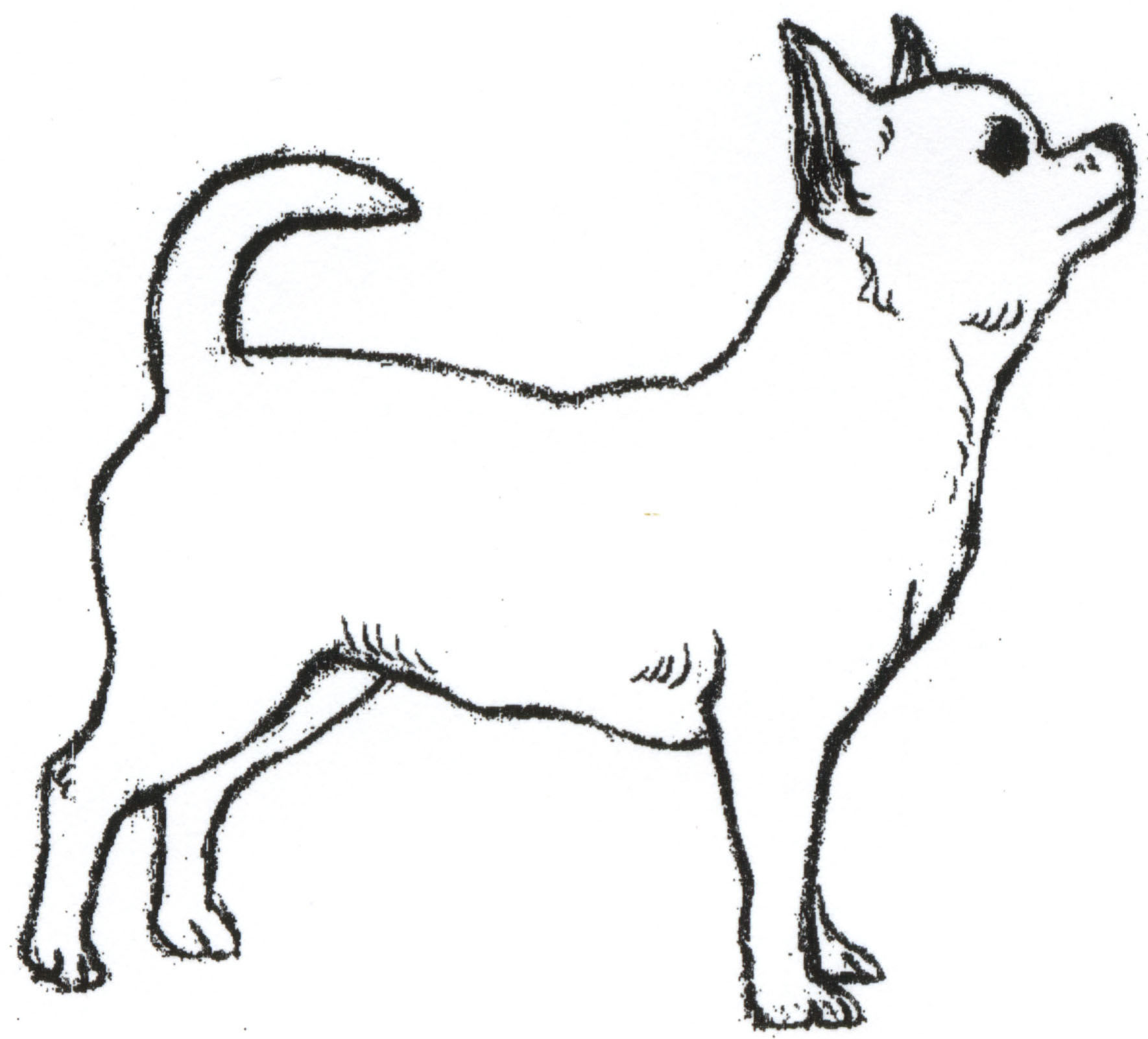 Free Drawings Of Dog Download Free Clip Art Free Clip