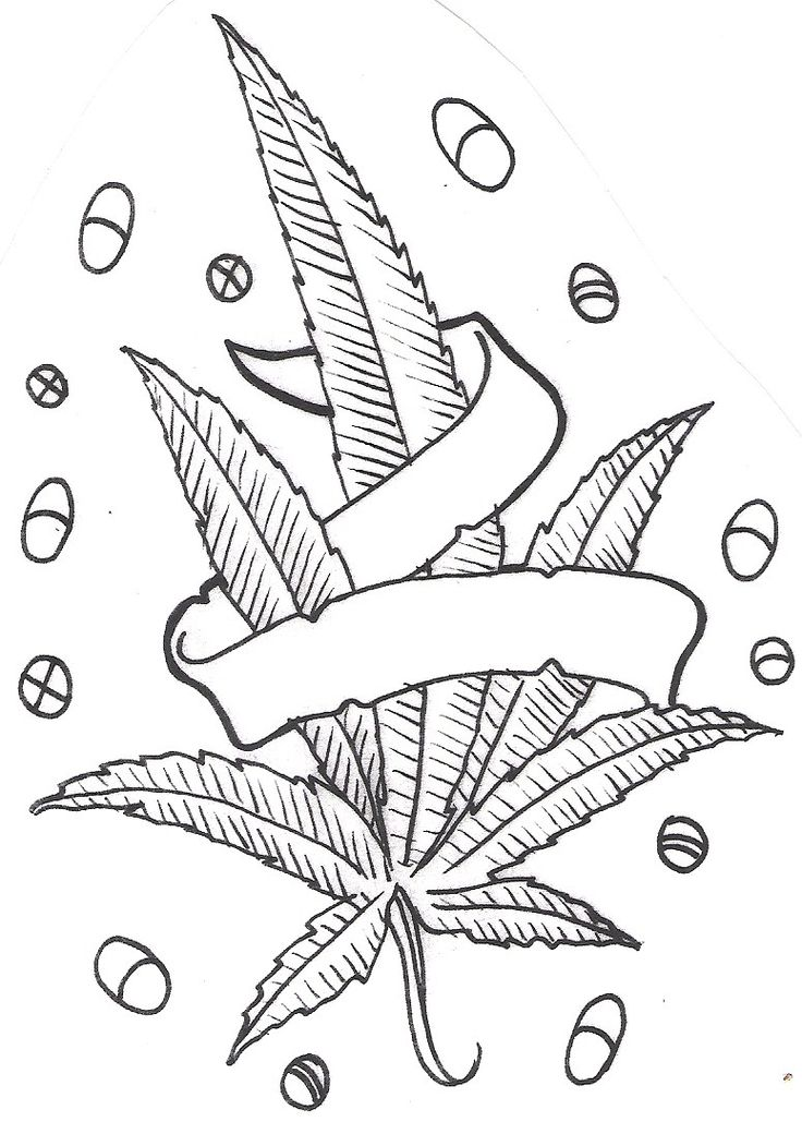 Step By Step Pot Leaf Drawing : drawing, Drawing,, Download, Clipart, Library