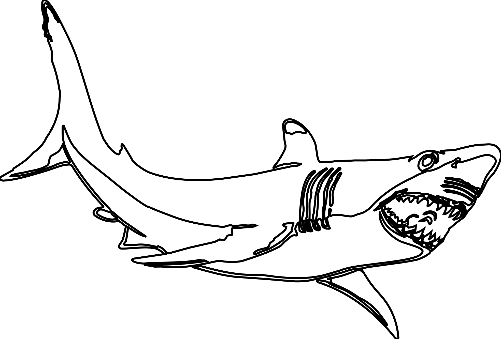 hight resolution of hammerhead shark clipart clipart library