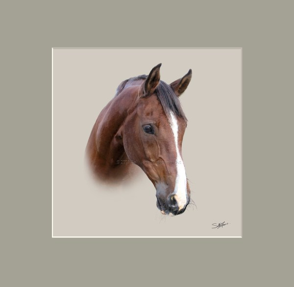 Free Horse Heads Clip Art