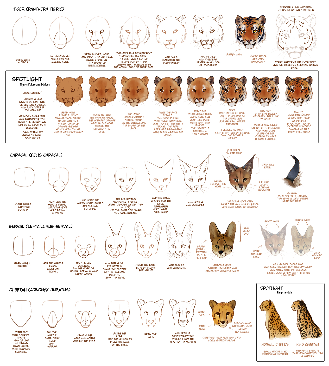 hight resolution of big cat paw tutorial 2 by tamberella on clipart library