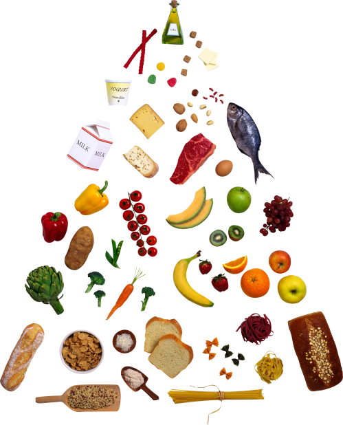 small resolution of food pyramid clipart clipart library