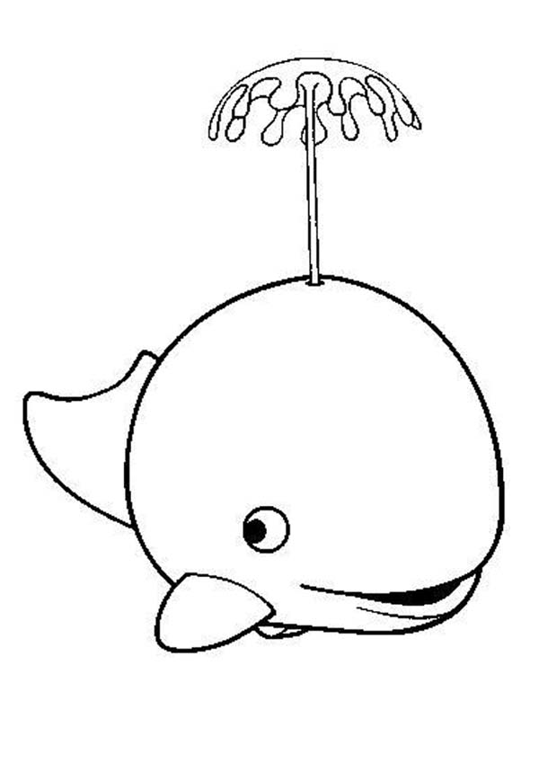 Free Whale Images For Kids, Download Free Clip Art, Free