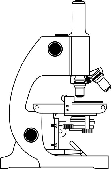 microscope diagram unlabeled nissan wiring free download clip art ben vector online royalty