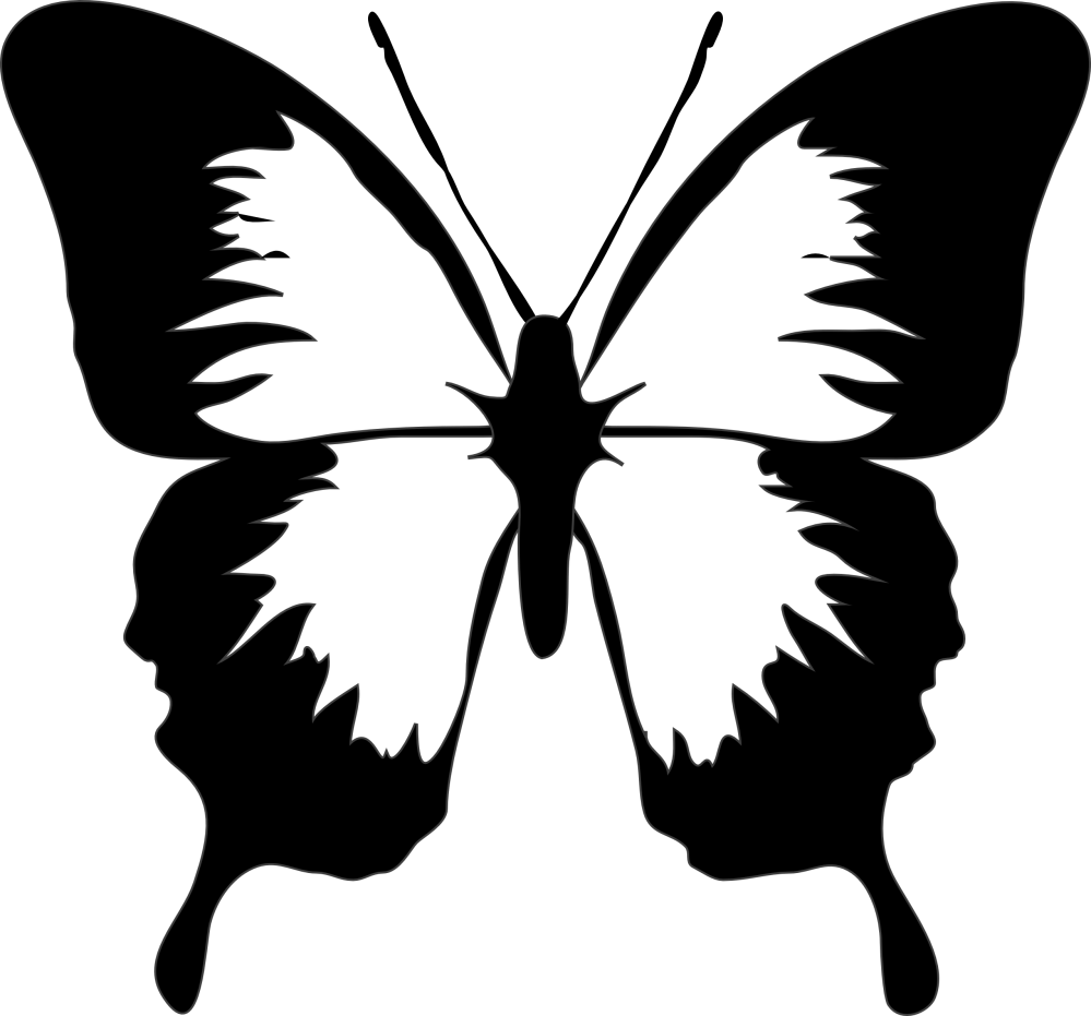 medium resolution of butterfly clip art black and white clipart library free clipart