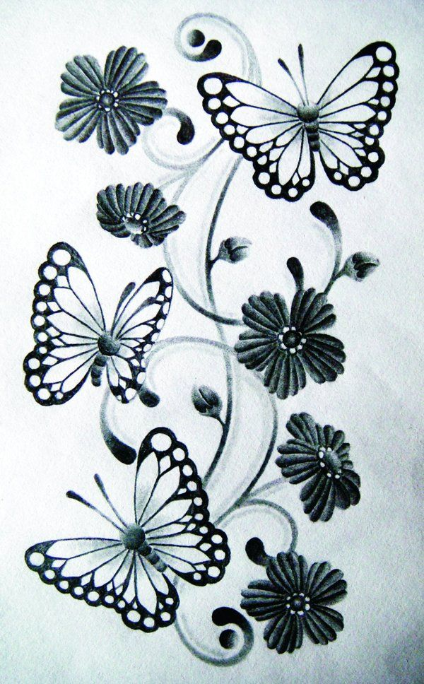 Pencil Drawings Of Flowers And Butterflies : pencil, drawings, flowers, butterflies, Butterfly, Drawing, Flower, Library