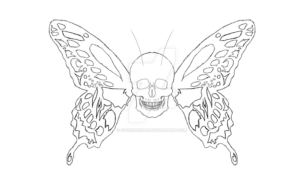 Free Butterfly Outlines, Download Free Clip Art, Free Clip