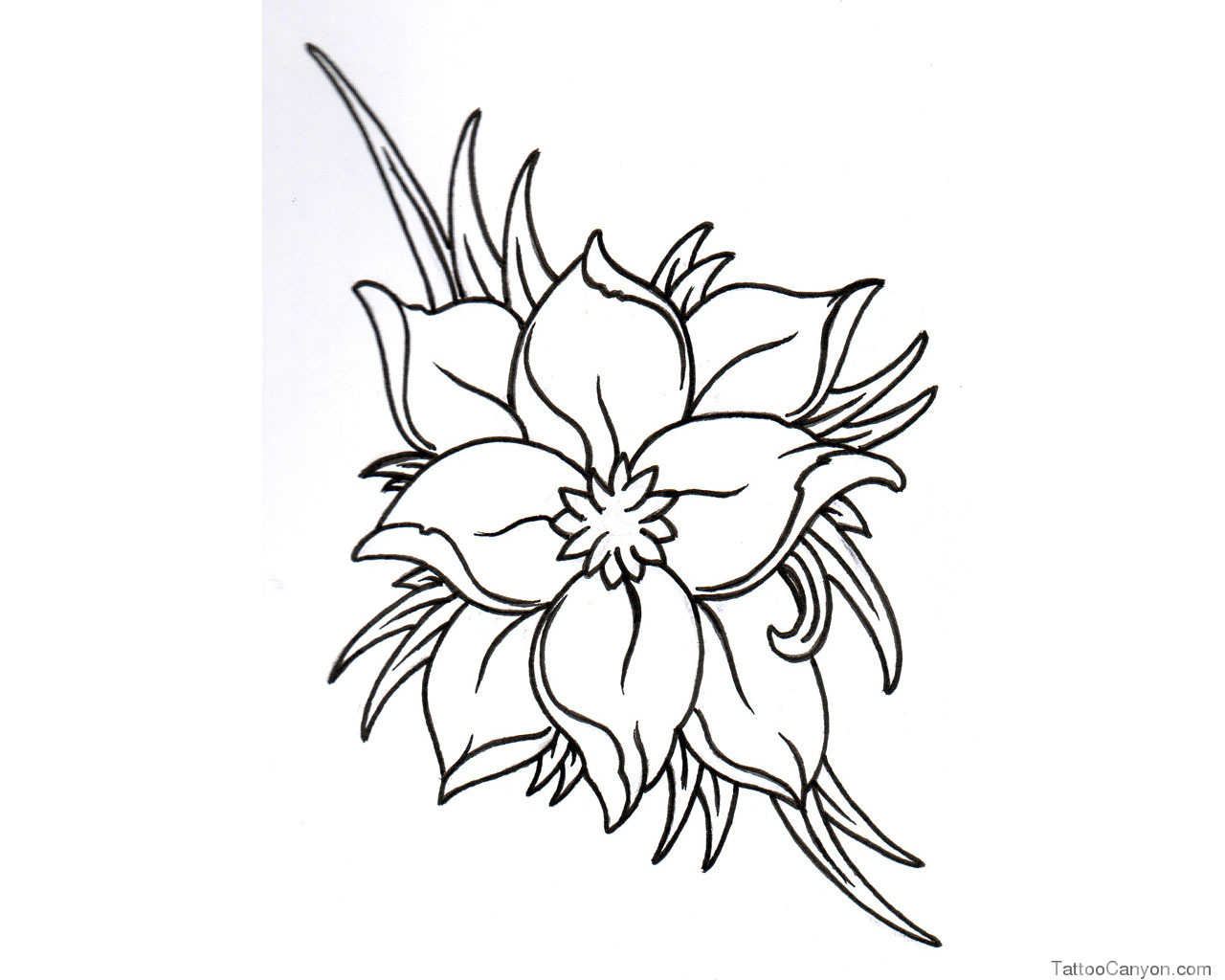 Free Black And White Pictures Of Flowers To Draw Download