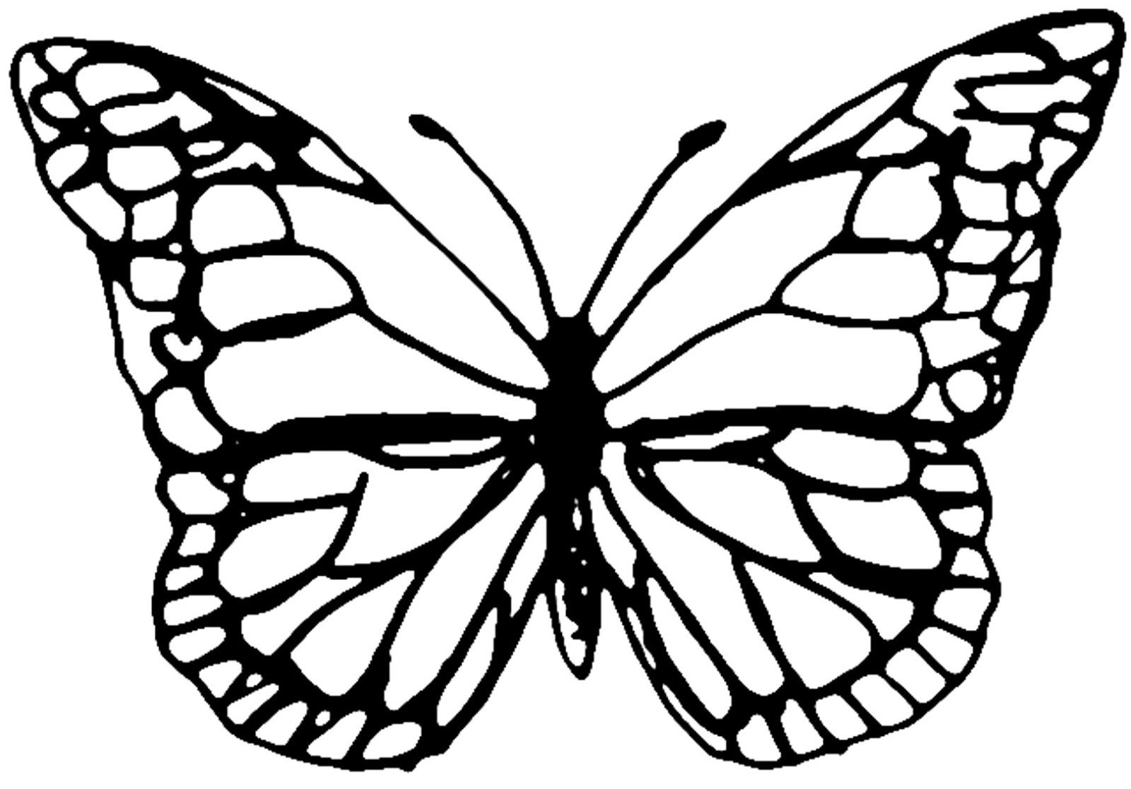 Free Butterfly Template Download Free Clip Art Free Clip