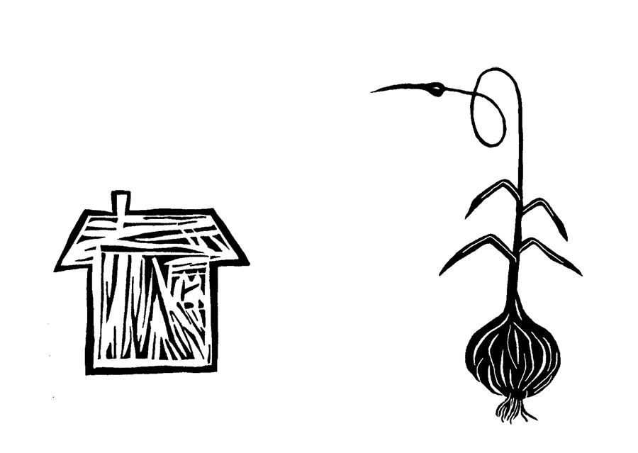 Funny garlic Colouring Pages (page 3)