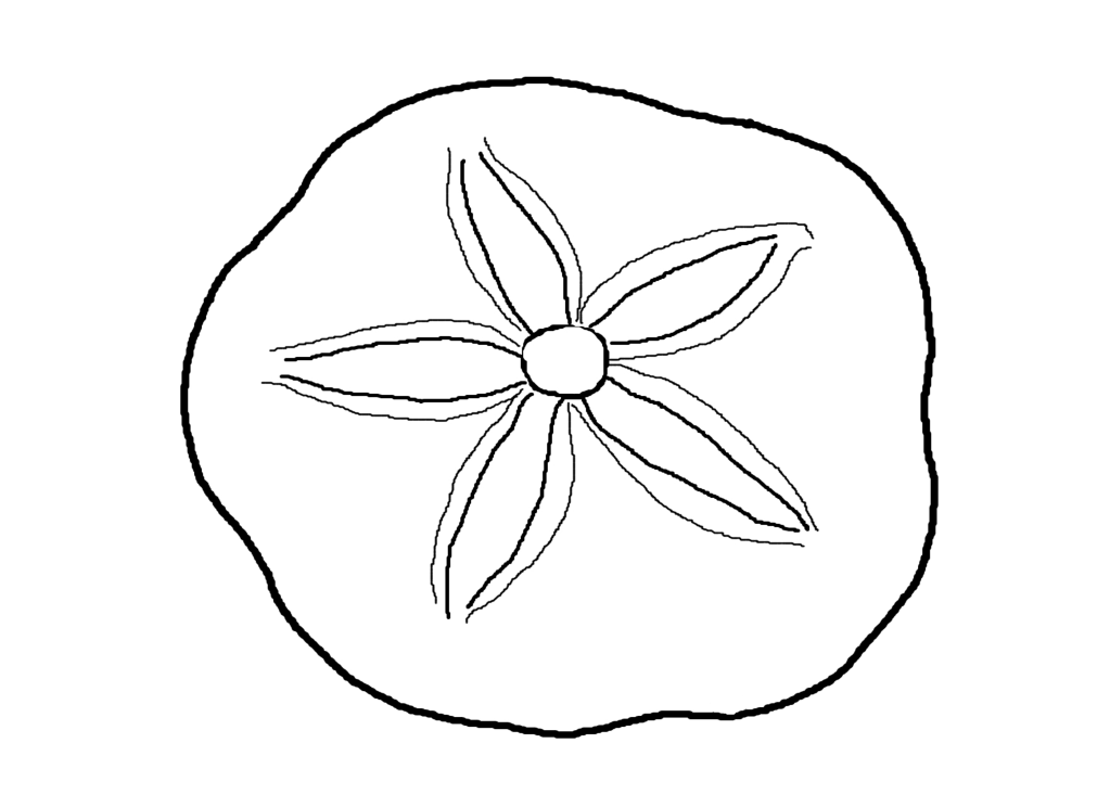 Free Sand Dollar Clipart, Download Free Clip Art, Free