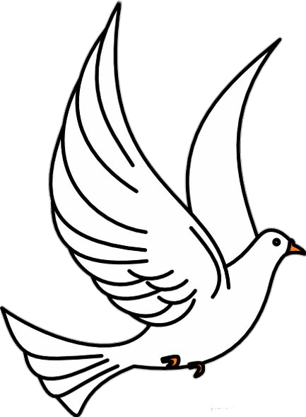 Burung Merpati Vektor : burung, merpati, vektor, Christian, Pigeons, Doves, Vector, Graphics, Openclipart, Burung, Download, 433*590, Transparent, Download., Library
