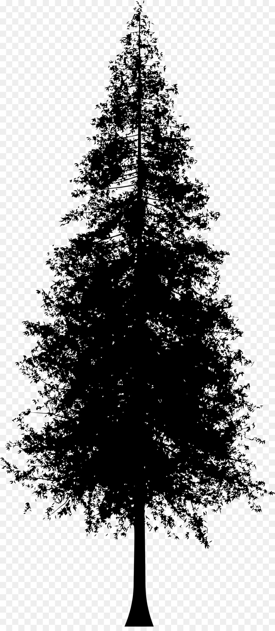 Pine Tree Line Drawing : drawing, Silhouette,, Download, Clipart, Library