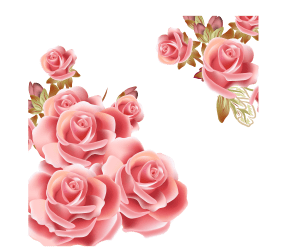 rose transparent pink background roses flower flowers clip vector cliparts clipart gold library