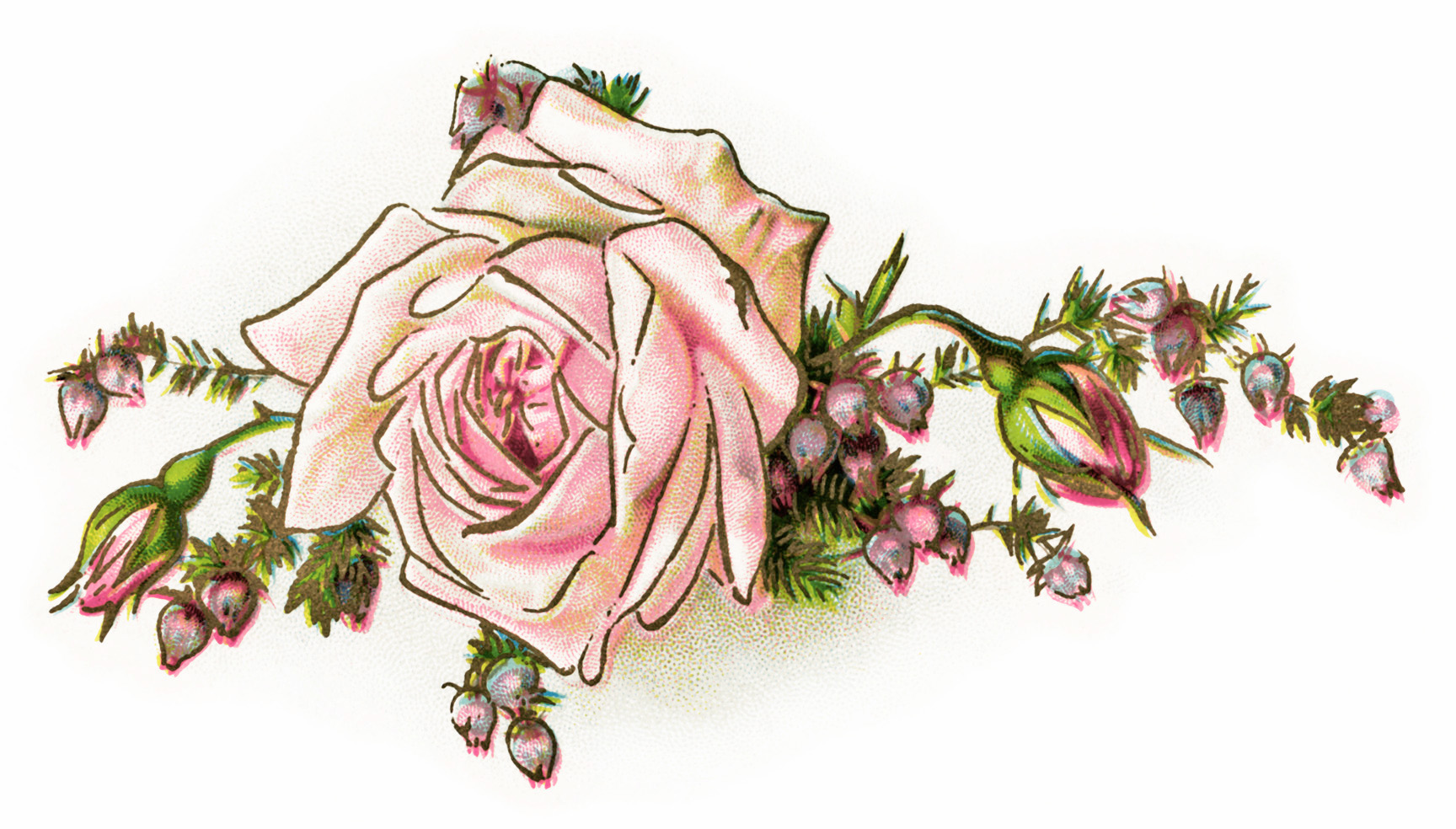 hight resolution of vintage flower clipart