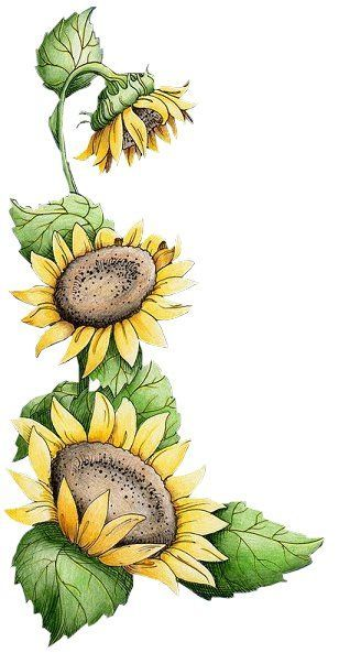 Fall Desktop Wallpaper With Sunflowers Free Vintage Sunflower Cliparts Download Free Clip Art