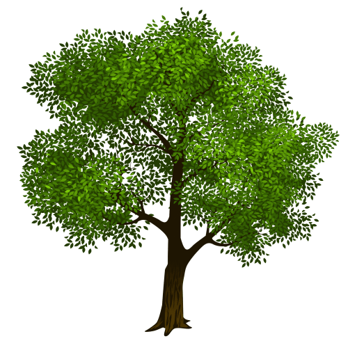 small resolution of tree clipart transparent green tree clipart picture png m 1423128566