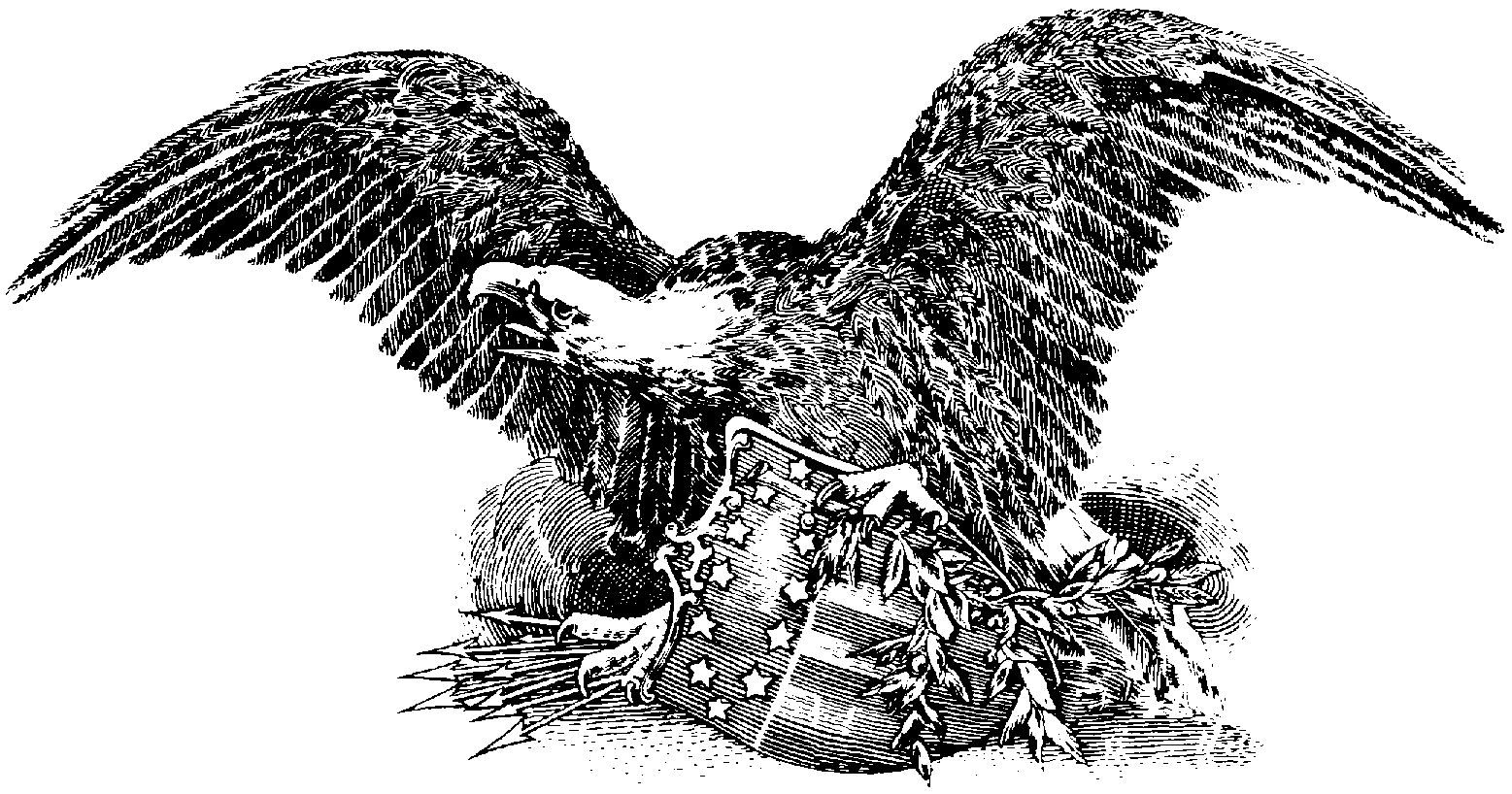 hight resolution of gallery for american eagle clipart 3